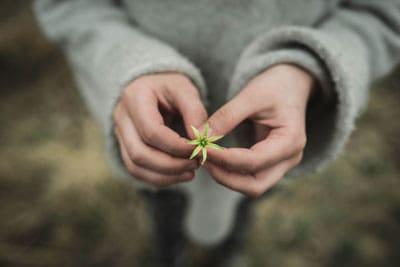 ידיים מחזיקות פרח